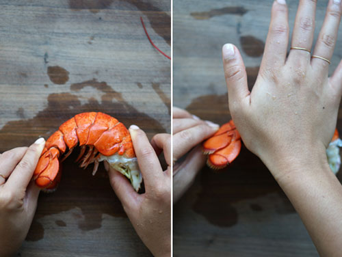 Detailing a lobster | Tacky Harper's Cryptic Clues