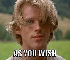 As you wish | Wesley | The Princess Bride
